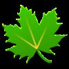 Logo Greenify